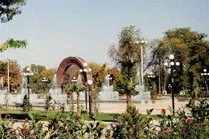 p-gardens