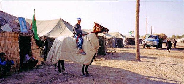 p-horse-camp2