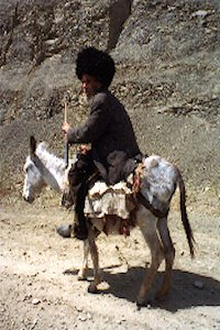 p-turkmen-on-horse
