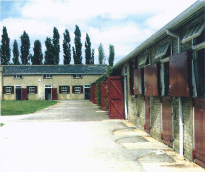 Newmarket Stable Tours